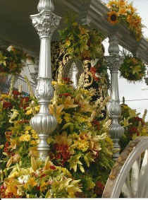 Simpecado del Inmaculado Corazón de María de Torreblanca en la carreta